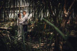 Sesja ślubna w poznańskiej palmiarni